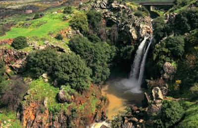 The Banias Springs of Israel